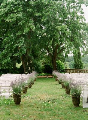 Potted Plants decor
