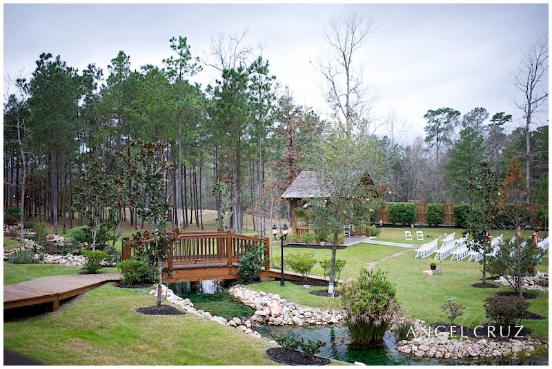 Amber Springs